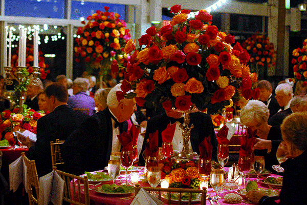 Gala event at botanical garden