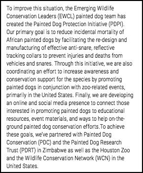 Crowdfunding description - Painted Dogs 2