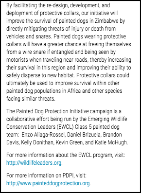 Crowdfunding description - Painted Dogs 3