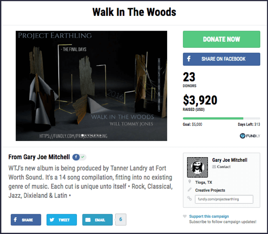 Example of a crowdfunding campaign for a creative project