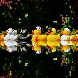 A Rubber Duck Race is a fun and silly fundraising event.