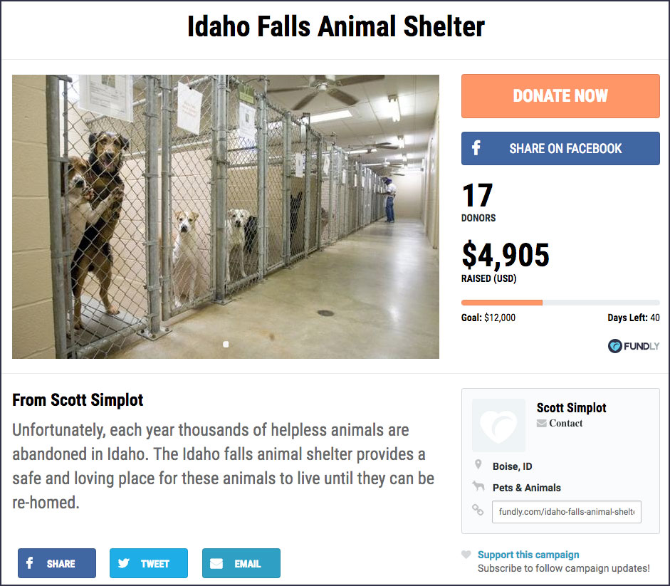 Fundraising Campaign - Animal Shelter