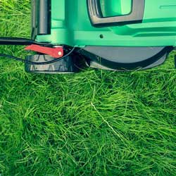 Start a lawn service to fundraise for kids or families.