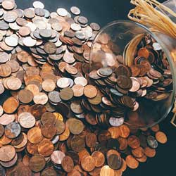 Have a penny drive to raise money.