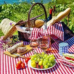 Host a community picnic as your next fundraiser!