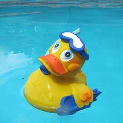 A rubber duck race is a great way to raise money for your sport or team.