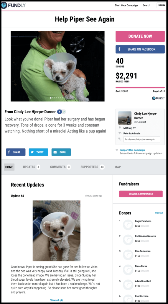Examples of crowdfunding campaigns for pets and animals