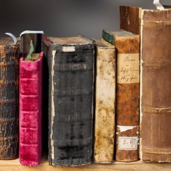 Organize a used book sale to raise money for cancer awareness, research, and treatment.