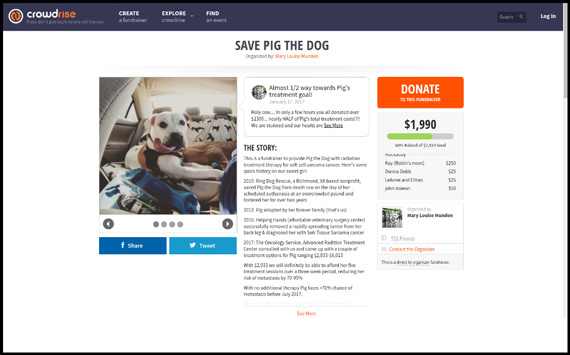 Nonprofits and individuals alike and can use Crowdrise, a GoFundMe alternative, to raise money.