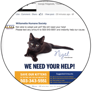 Including photos in text-to-give advertising on Facebook, like the Willamette Humane Society did, will help your nonprofit capture the attention of more donors.